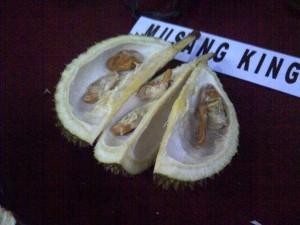 Biji Musang King