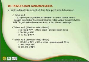 Pemupukan Durian Litbang Pertanian
