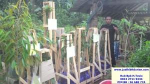 bukti pengiriman, jualbibitdurian, durian bawor kemranjen