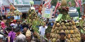 festifal durian