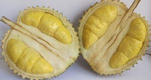 DURIAN 5