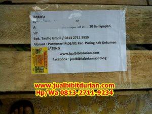 HpWa 0813-2711-9234, Jual Bibit Durian Bawor, Harga Bibit Durian Bawor, Kebumen H. Tovix.jpg (2)