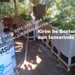 bibit durian bawor samarinda, bibit durian bawor bontang, www.jualbibitdurian.com, Bp.H Tovix 0813 2711 9234 Pin 24d2 7997
