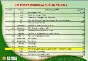 Pemupukan Durian 1