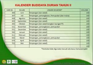 Pemupukan Durian 2