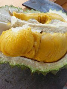 buah durian musang king, www.durianmusangking.blogspot.com, Bp.H Tovix 0813 2711 9234