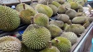 durian k