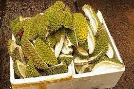 kulit durian