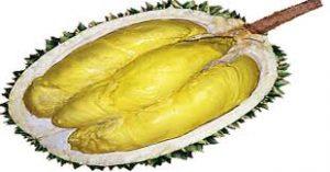 durian petruk 1
